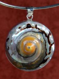 Zilveren hanger met een tulband schelp