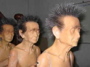 Monniken met haren